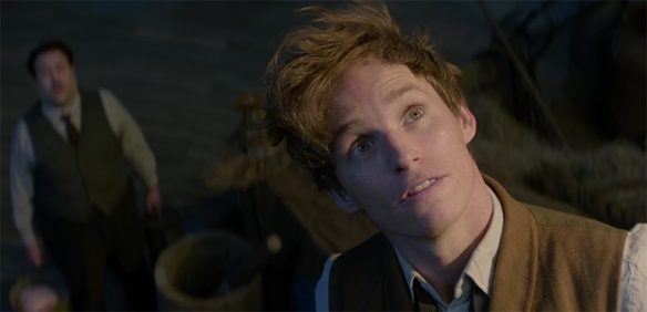 Eddie Redmayne gives this amazing emery to the character of Newt Scamander