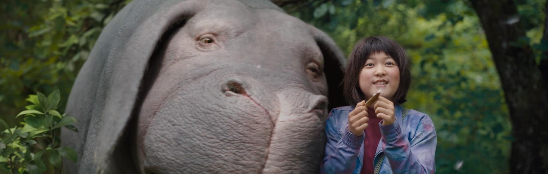 Okja. Image Credit: Netflix.