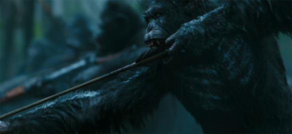 The Apes are so realistic you forget they are visual effects