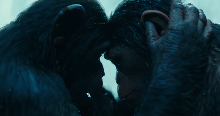 Be prepared for the emotional impact this film will have. War of the Planets of the Apes. Image Credit: 20th Century Fox.