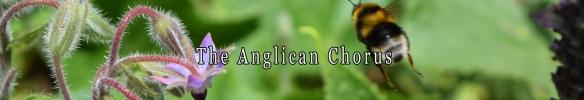 The Anglican Chorus