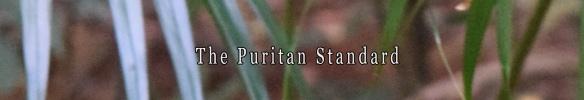 The Puritan Standard