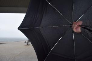 Umbrella I choose you