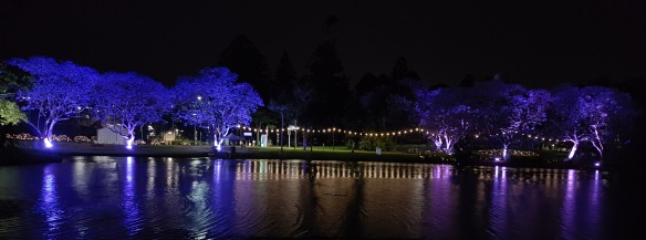 UQ Lakes at Night all lit up. Image Credit: Brian MacNamara
