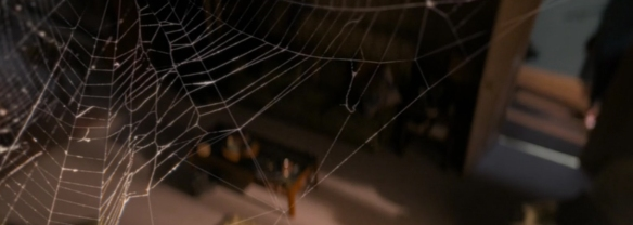 Doctor Who: Arachnids In The UK. Image Credit: BBC