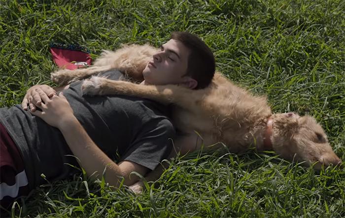 Diecisiete (Seventeen). Image Credit: Netflix.